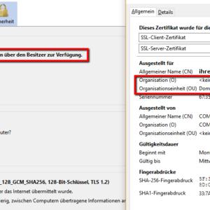Detail Domain-validierte Zertifikate